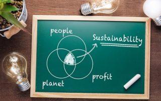 Sustainability Chart on Chalkboard